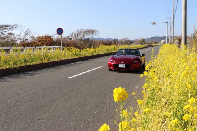 マツダ ロードスター「オープンカーde体感!!南房総ドライブ」